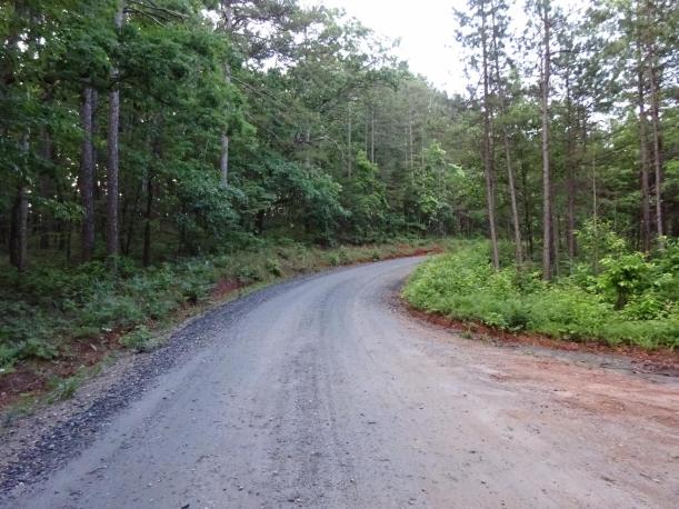 Currahee Trail